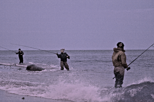 Some other tips for  Bluefish  Catching