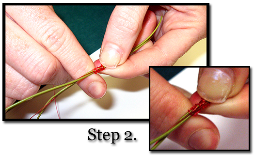 Albright Knot Learning Guide